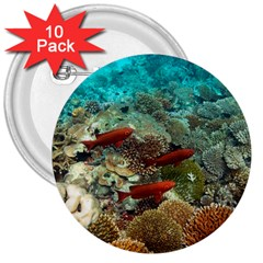 Coral Garden 1 3  Buttons (10 Pack)