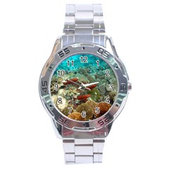 Coral Garden 1 Stainless Steel Analogue Watch