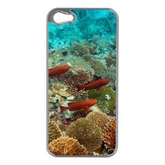 Coral Garden 1 Apple Iphone 5 Case (silver)