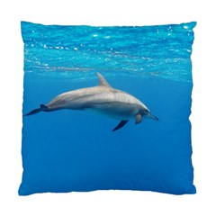 Dolphin 3 Standard Cushion Case (one Side)
