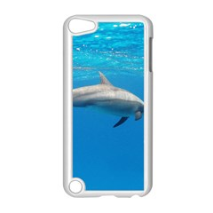 Dolphin 3 Apple Ipod Touch 5 Case (white)