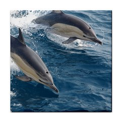 Dolphin 4 Tile Coasters