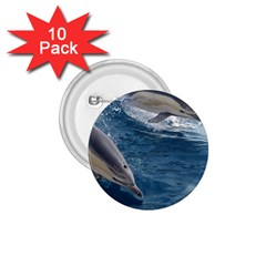 Dolphin 4 1 75  Buttons (10 Pack)