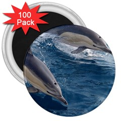 Dolphin 4 3  Magnets (100 Pack)