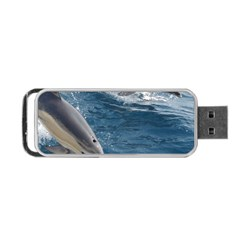 Dolphin 4 Portable Usb Flash (one Side)