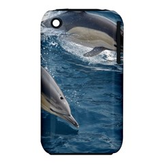 Dolphin 4 Iphone 3s/3gs