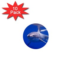 Great White Shark 4 1  Mini Buttons (10 Pack)