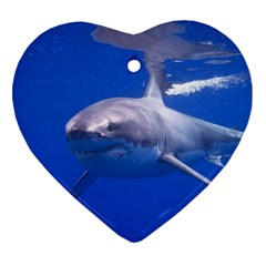 Great White Shark 4 Heart Ornament (two Sides)