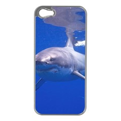 Great White Shark 4 Apple Iphone 5 Case (silver)