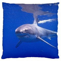 Great White Shark 4 Standard Flano Cushion Case (two Sides)