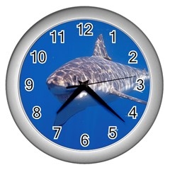 Great White Shark 5 Wall Clocks (silver)