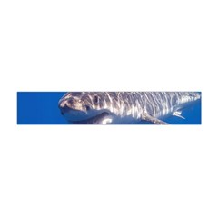 Great White Shark 5 Flano Scarf (mini)