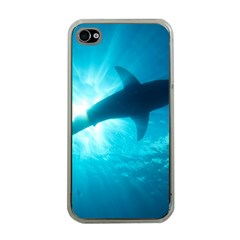 Great White Shark 6 Apple Iphone 4 Case (clear)