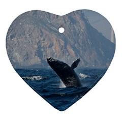 Humpback 1 Ornament (heart)