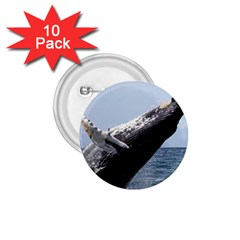 Humpback 2 1 75  Buttons (10 Pack)