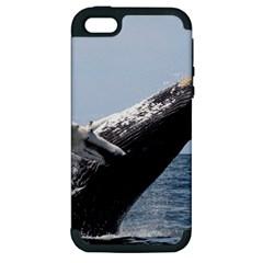 Humpback 2 Apple Iphone 5 Hardshell Case (pc+silicone)