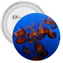 Jellyfish Aquarium 3  Buttons