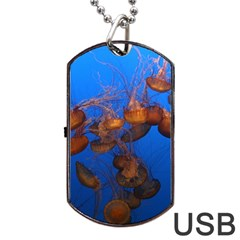Jellyfish Aquarium Dog Tag Usb Flash (one Side)