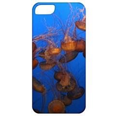 Jellyfish Aquarium Apple Iphone 5 Classic Hardshell Case