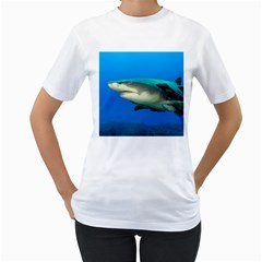 Lemon Shark Women s T Shirt (white) (two Sided)