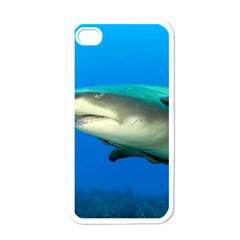 Lemon Shark Apple Iphone 4 Case (white)