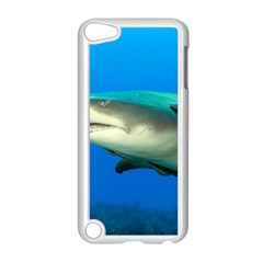 Lemon Shark Apple Ipod Touch 5 Case (white)