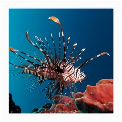 Lionfish 1 Medium Glasses Cloth