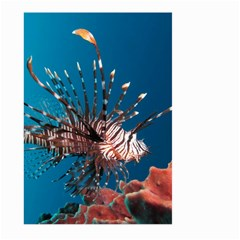 Lionfish 1 Large Garden Flag (two Sides)