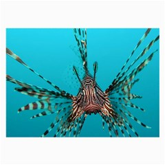 Lionfish 2 Large Glasses Cloth