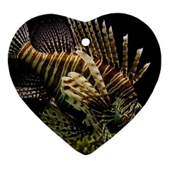Lionfish 3 Heart Ornament (two Sides)