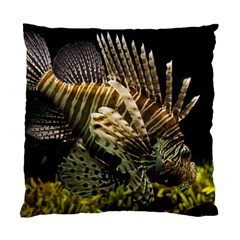 Lionfish 3 Standard Cushion Case (one Side)