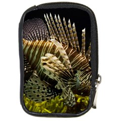 Lionfish 3 Compact Camera Cases
