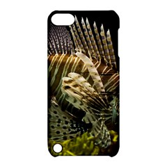 Lionfish 3 Apple Ipod Touch 5 Hardshell Case With Stand