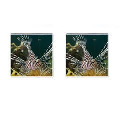 Lionfish 4 Cufflinks (square)