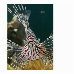 Lionfish 4 Small Garden Flag (two Sides)