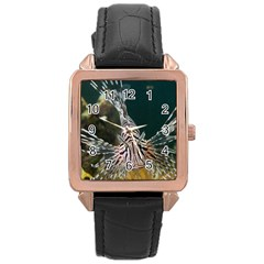 Lionfish 4 Rose Gold Leather Watch