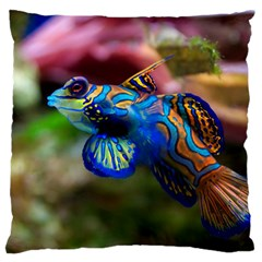 Mandarinfish 1 Large Cushion Case (two Sides)