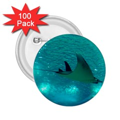 Manta Ray 1 2 25  Buttons (100 Pack)