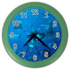 Manta Ray 2 Color Wall Clocks