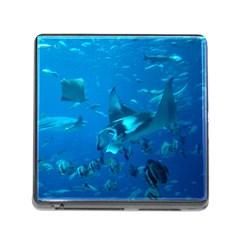 Manta Ray 2 Memory Card Reader (square)