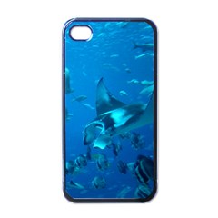 Manta Ray 2 Apple Iphone 4 Case (black)