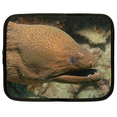 Moray Eel 1 Netbook Case (large)