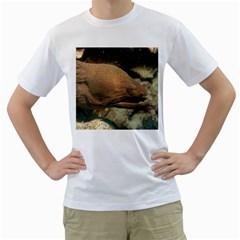 Moray Eel 1 Men s T Shirt (white)