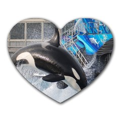 Orca 1 Heart Mousepads