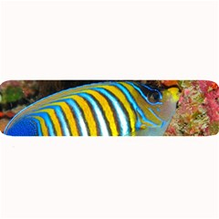 Regal Angelfish Large Bar Mats