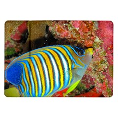 Regal Angelfish Samsung Galaxy Tab 10 1  P7500 Flip Case