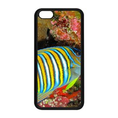 Regal Angelfish Apple Iphone 5c Seamless Case (black)