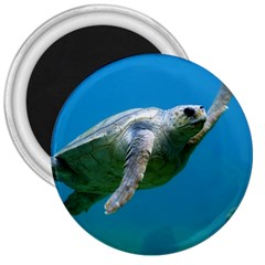 Sea Turtle 2 3  Magnets