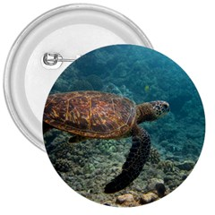 Sea Turtle 3 3  Buttons