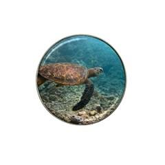 Sea Turtle 3 Hat Clip Ball Marker